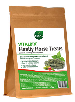 Vitalbix Healthy Horse Treats 1 kg